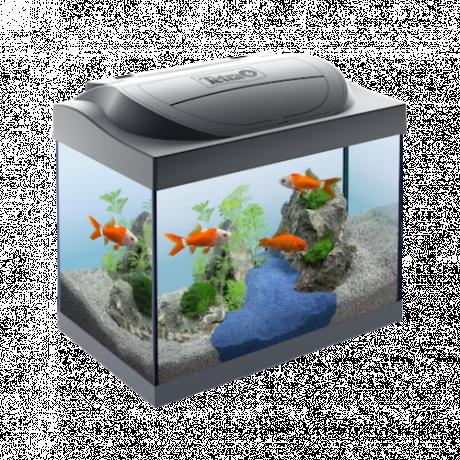 Akvaarium Tetra Starter Line LED 30 l