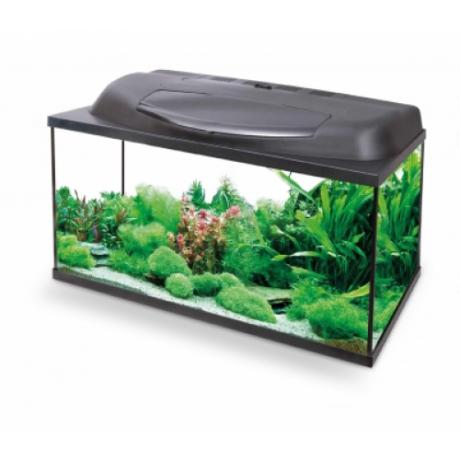 Akvaarium Aqael Aqua 4 start PAP 60 X 30 X 30 (54l)