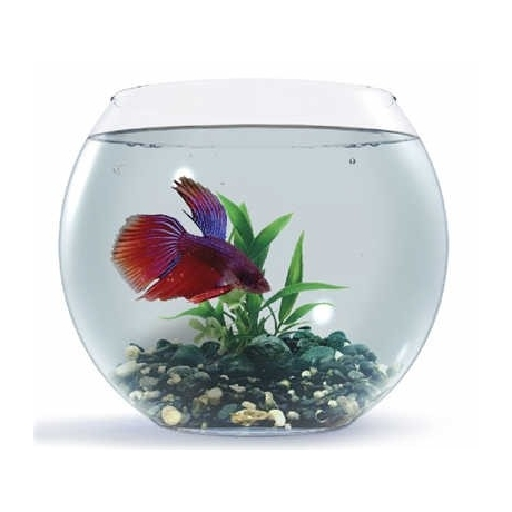 Aquael Ümmargune akvaarium, 13l