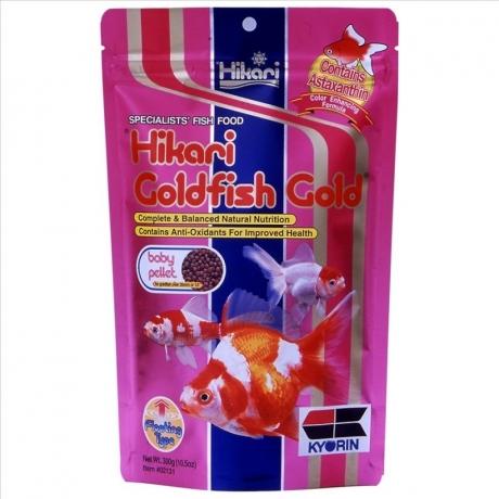 hikari-goldfish-gold300-800x800.jpg