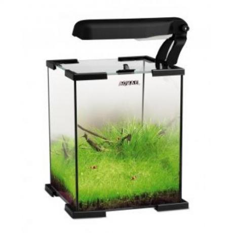 Nano akvaarium Aquael Shrimp Set, 10l
