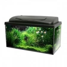 Akvaarium Aqua 4 Home 40 X 25 X 25, 25l