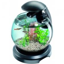Tetra Cascade Globe Led Akvaarium 6,8L