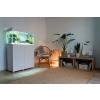 123415-opti-set-125-white-16-interior_933.jpeg
